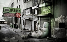Abstract concept help global warming white bear wallpaper