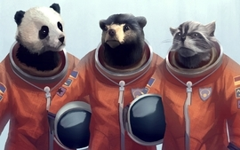 Animals panda bears artwork bears cosmonaut raccoons furry wallpaper