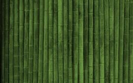 Bamboo textures wallpaper