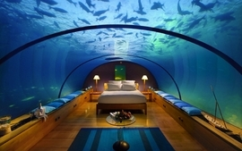 Beds fish pillows bedroom underwater 2 wallpaper