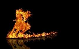 Black animals fire horses digital art black background wallpaper