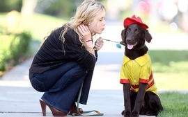 Blondes women dogs wallpaper