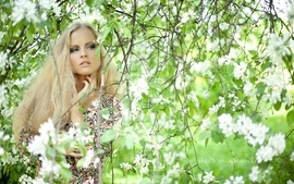 Blondes women trees wallpaper