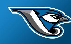 Blue baseball toronto mlb logos toronto blue jays 2 wallpaper