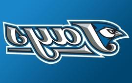 Blue baseball toronto mlb logos toronto blue jays wallpaper