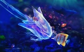 Blue photography fish jellyfish artwork underwater adam spizak wallpaper