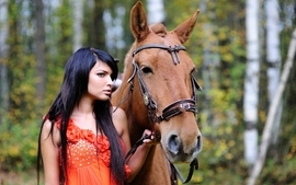 Brunettes women outdoors horses wallpaper