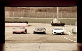 Cars lamborghini 8 wallpaper