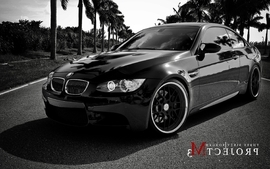 Cars monochrome palm trees bmw m3 wallpaper