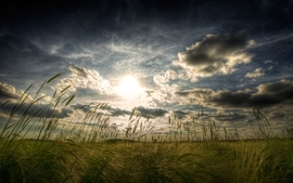 Clouds landscapes nature fields hdr photography wallpaper