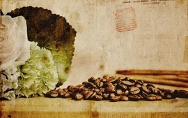 Coffee leaves plants drinks beans raw wallpaper