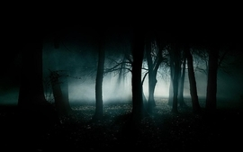 Creepy blue black dark night white forest smoke wallpaper