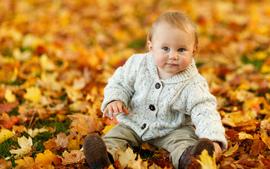 Cute Baby Boy Autumn Leaves wallpaper