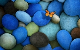 Digital art colors butterflies wallpaper
