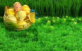 Eggs grass chicken easter easter eggs wallpaper