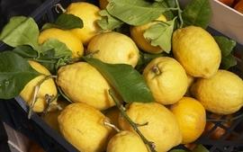 Fruits lemons wallpaper