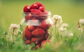 Fruits strawberries 2 wallpaper