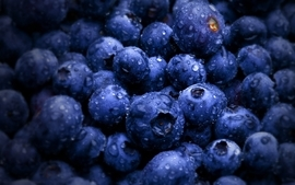 Fruits water drops macro blueberries wallpaper