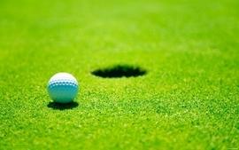 Green grass golf depth of field golf balls wallpaper