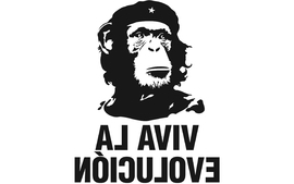 Humor revolution evolution che guevara wallpaper