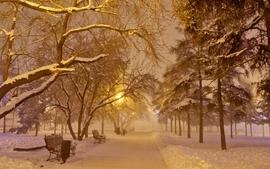 Ice snow trees park bench wallpaper
