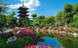 Japan nature trees flowers garden kyoto lakes wallpaper
