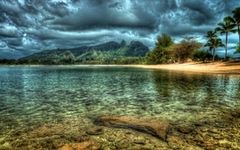 Kauai beach hawaii island trees reflection wallpaper