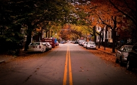 Landscapes autumn season cars leaves roads vehicles wallpaper