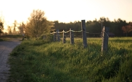 Landscapes nature fences grass depth of field wallpaper