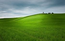 Landscapes nature fields hills wallpaper