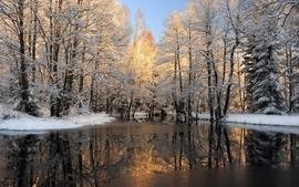 Landscapes nature winter scenes wallpaper