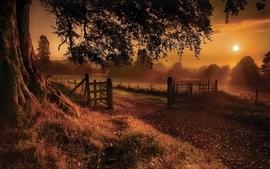 Landscapes sun trees farms wallpaper