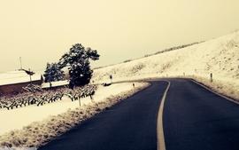 Landscapes winter snow roads wallpaper