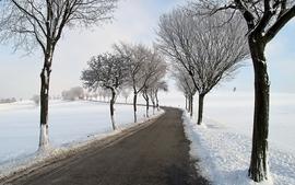 Landscapes winter snow trees roads wallpaper