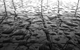 Metal grayscale raindrops wallpaper