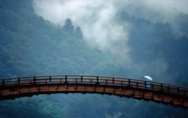 Mountains forest bridges umbrellas wallpaper