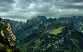Mountains landscapes forest photography wallpaper