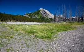 Mountains landscapes grass wallpaper