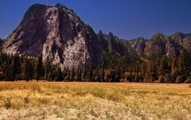 Mountains landscapes trees wallpaper