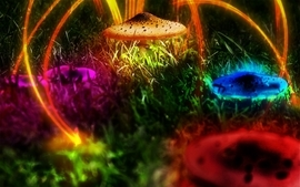 Multicolor mushrooms plants psychedelic digital art wallpaper