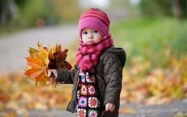Nature autumn baby wool wallpaper