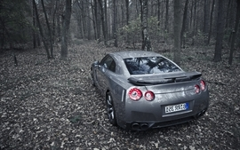 Nature forest cars outdoors nissan jdm nissan gtr r35 wallpaper