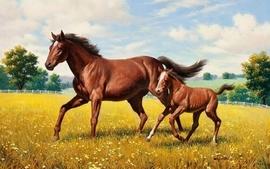Paintings nature multicolor flowers animals garden horses wallpaper