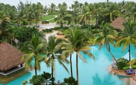 Palm trees swimming pools 2 wallpaper