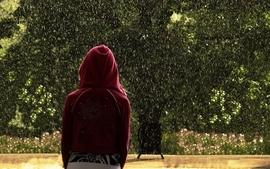 Rain outdoors plants hoodie wallpaper