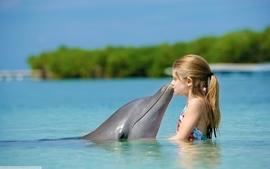 Seas kissing dolphins friendship children wallpaper