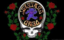 Skulls music bears band roses black background 60s the grateful wallpaper
