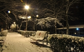 Snow night parks wallpaper