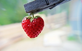 Strawberries clothespin wallpaper