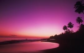 Sunset 2 wallpaper